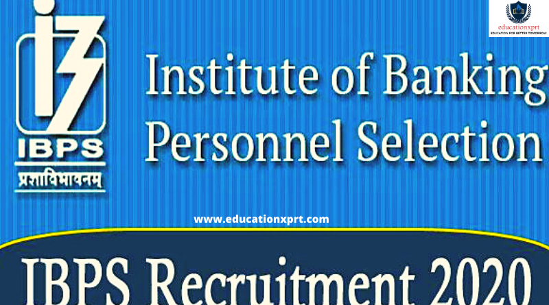 IBPS Faculty Recruitment 2020